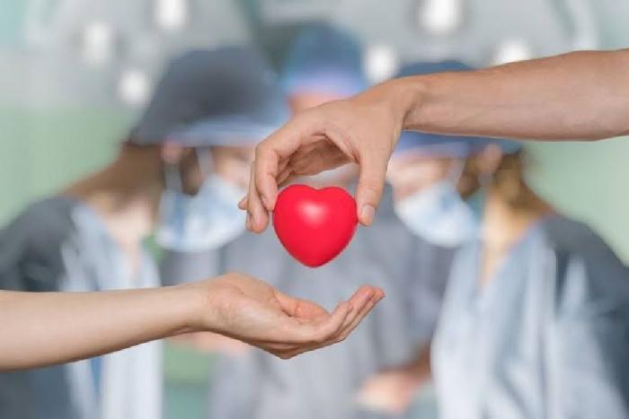 Trasplante de órganos: una segunda oportunidad de vida